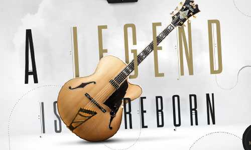 D' Angelico Guitars