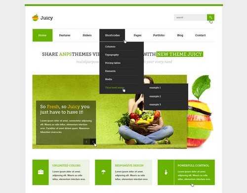 Juicy Responsive WordPress business themes