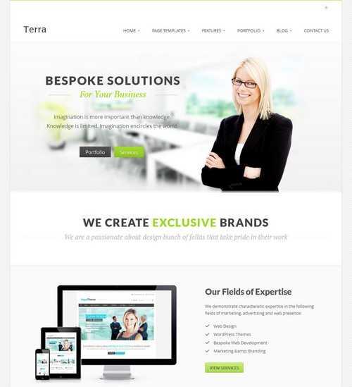 Terra Business WordPress Templete